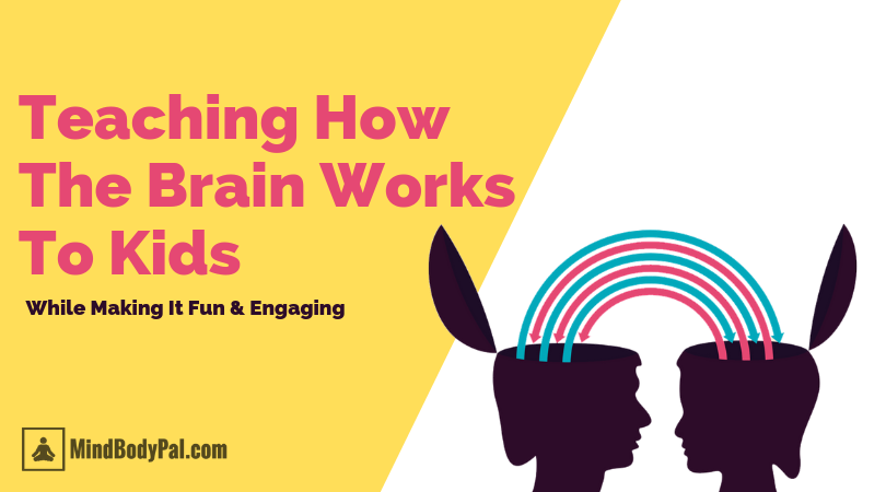 teaching how the brain works to kids